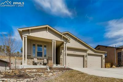 174 KETTLE VALLEY WAY, MONUMENT, CO 80132 - Photo 1