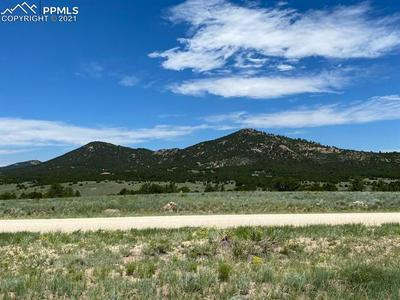 TBD ROUND UP ROAD, Westcliffe, CO 81252 - Photo 2