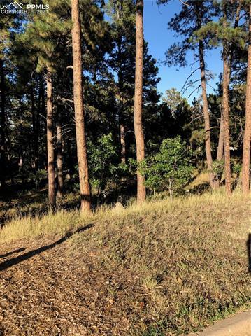584 SILVER OAK GRV, Colorado Springs, CO 80906 - Photo 2