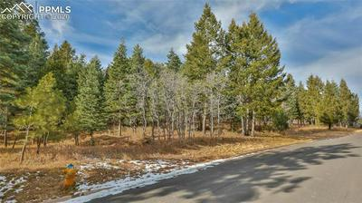 4950 WILLOW STONE HTS, Colorado Springs, CO 80906 - Photo 2