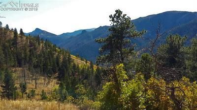 8210 BEAR DANCE HEIGHTS, Cascade, CO 80809 - Photo 2