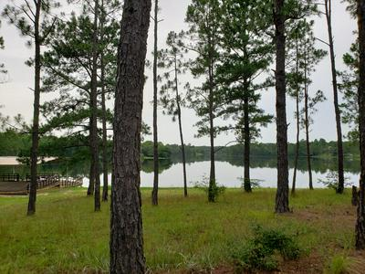 00 LAKESHORE DR., Lumberton, MS 39455 - Photo 2