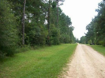 0 HWY 13, Lumberton, MS 39455 - Photo 2