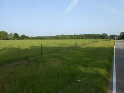 00000 WILLIAM RD, Picayune, MS 39466 - Photo 2