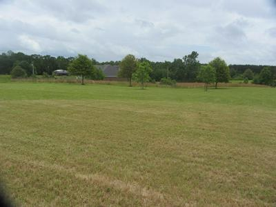 999 LIVING WATER DRIVE, Carriere, MS 39426 - Photo 2