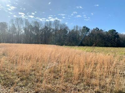 0 POSSUM FORK RD, Picayune, MS 39466 - Photo 2