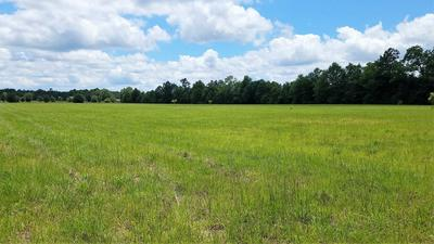 4 ANCHOR LAKE RD, Carriere, MS 39426 - Photo 2