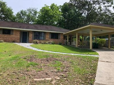 1127 E LAKESHORE DR, Carriere, MS 39426 - Photo 1