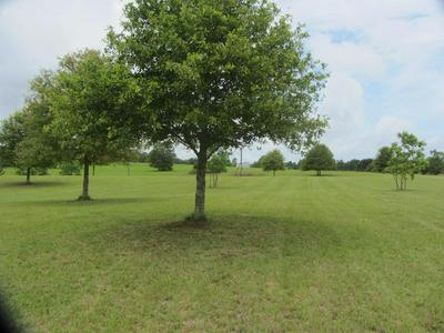 999 LIVING WATER DRIVE, Carriere, MS 39426 - Photo 1
