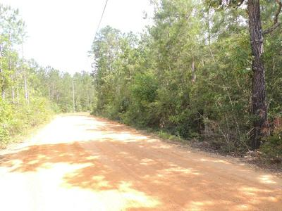 00 BEAR DRIVE, Carriere, MS 39426 - Photo 2