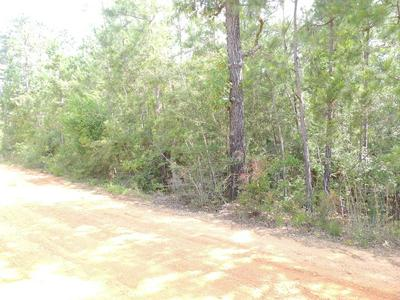 00 BEAR DRIVE, Carriere, MS 39426 - Photo 1