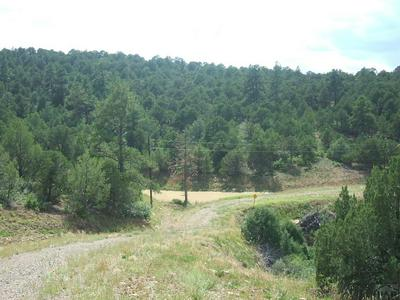 LOT 86 NO SITE ADDRESS, Trinidad, CO 81082 - Photo 1