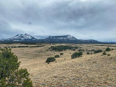 LOT 32 COLORADO LAND AND GRAZING, Gardner, CO 81040 - Photo 1