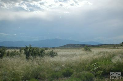 LOT 145 GHOST RIVER RANCH, Rye, CO 81069 - Photo 1