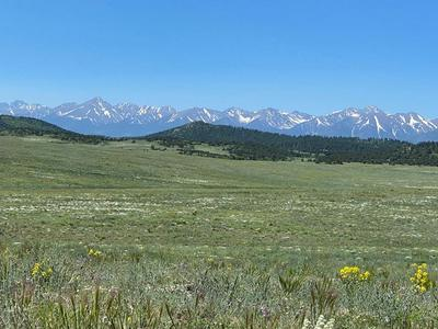 TBD ROUNDUP, Westcliffe, CO 81252 - Photo 1