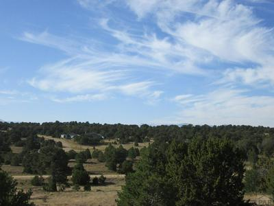 LOT 38 NAVAJO RANCH RESORT, Walsenburg, CO 81089 - Photo 1