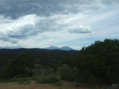 LOT 89 NO SITE ADDRESS, Trinidad, CO 81082 - Photo 1