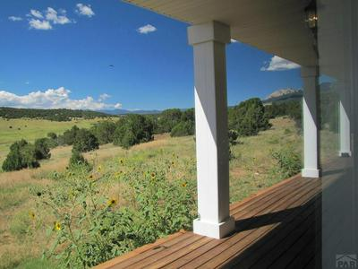 9000 COUNTY ROAD 521, Walsenburg, CO 81089 - Photo 2