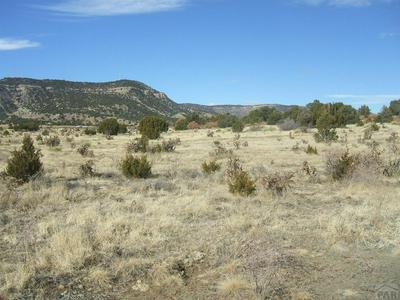 PARCEL 6 COUNTY RD 71.1, Trinidad, CO 81082 - Photo 1
