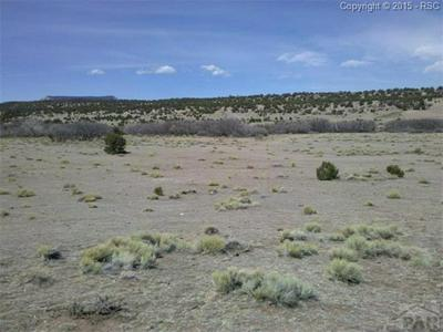26-30-62 COUNTY RD 91.1, Hoehne, CO 81046 - Photo 1