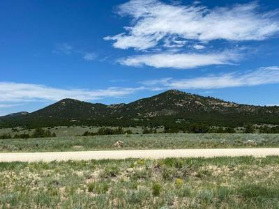 TBD ROUNDUP, Westcliffe, CO 81252 - Photo 2