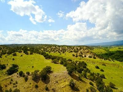LOT 12 TURKEY CREEK RANCHES, Gardner, CO 81040 - Photo 1