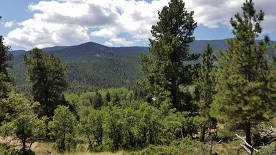 TBD WONDER TRAIL, Rye, CO 81069 - Photo 1