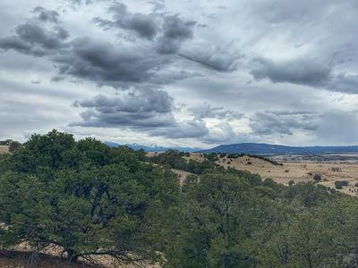 LOT 32 COLORADO LAND AND GRAZING, Gardner, CO 81040 - Photo 2