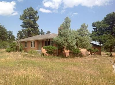 7949 HWY 165, Rye, CO 81069 - Photo 1