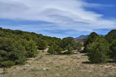 LOT 79 COLORADO LAND AND GRAZING, Gardner, CO 81040 - Photo 1