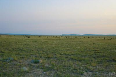 LOT 153 GHOST RIVER RANCH, Rye, CO 81069 - Photo 2