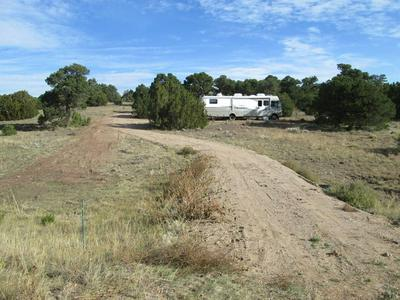 LOT 38 NAVAJO RANCH RESORT, Walsenburg, CO 81089 - Photo 2