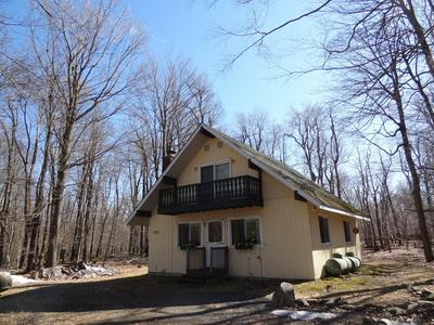 1071 VALLEY RD, Newfoundland, PA 18445 - Photo 2