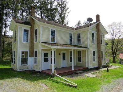 8 SANDERCOCK RD, Equinunk, PA 18417 - Photo 1