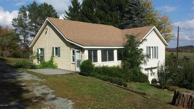 1395 COCHECTON TPKE, Tyler Hill, PA 18469 - Photo 1