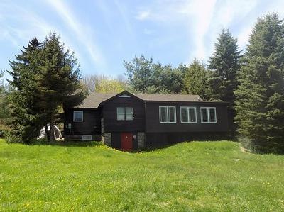 216 N SOUTH TURNPIKE RD, Newfoundland, PA 18445 - Photo 1