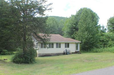 655 PEAS EDDY RD, Hancock, NY 13783 - Photo 1