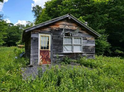 NEWMAN RD, Hancock, NY 13783 - Photo 1