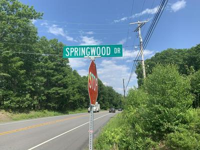 127 SPRINGWOOD DR, Hawley, PA 18428 - Photo 2