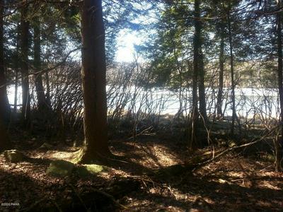 123 ARROWHEAD CIR, Newfoundland, PA 18445 - Photo 2