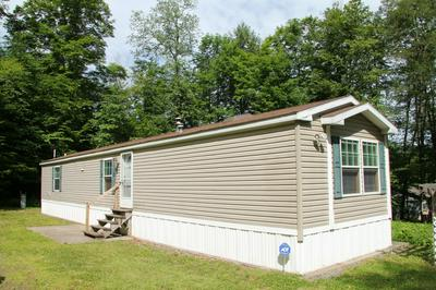 507 DUCK HARBOR RD, Equinunk, PA 18417 - Photo 1