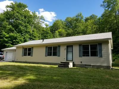 57 HAWLEY RD, Equinunk, PA 18417 - Photo 1