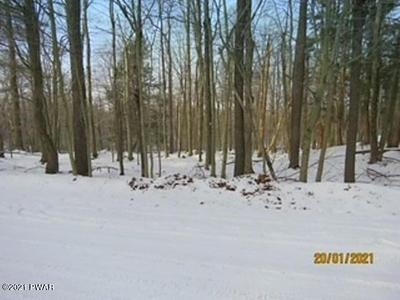 LOT 3006 BUCK HILL RD, Greentown, PA 18426 - Photo 1