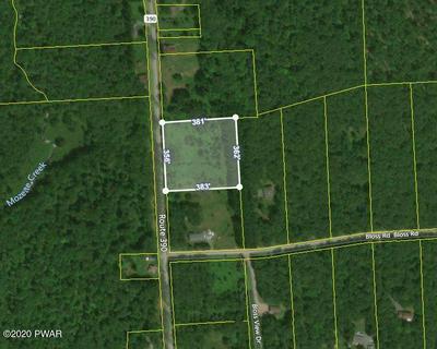 LOT 1 RT 390, Greentown, PA 18445 - Photo 1