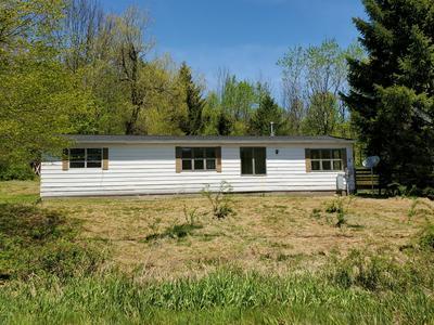 601 COCHECTON TPKE, Tyler Hill, PA 18469 - Photo 1