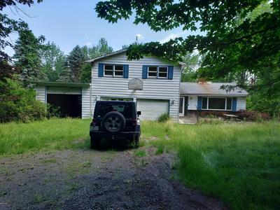 173 MOUNTAINVIEW RD, Newfoundland, PA 18445 - Photo 1