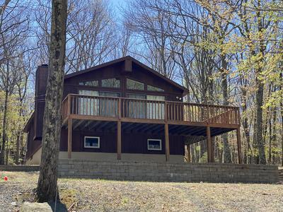 313 FOREST DR, Lords Valley, PA 18438 - Photo 1