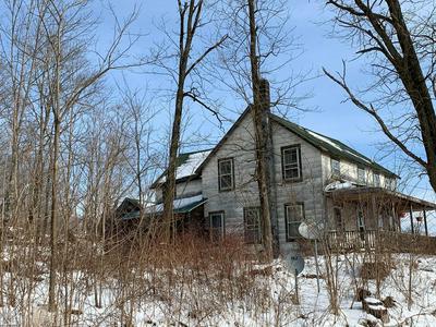 3357 S DRY BROOK RD, Hancock, NY 13783 - Photo 2