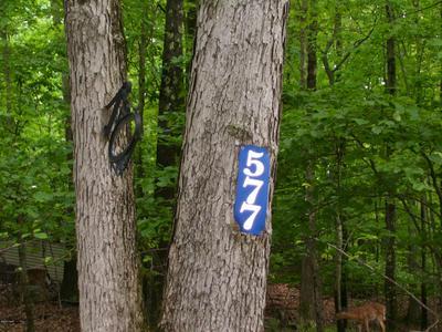 577 LAKESHORE DR, Lakeville, PA 18438 - Photo 2