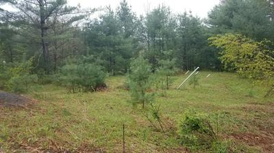 PINE FOREST RD, Greeley, PA 18425 - Photo 2